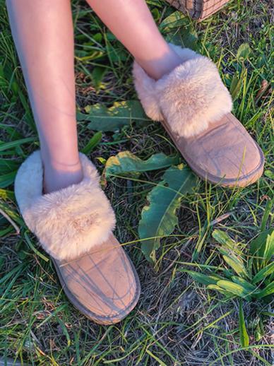 斑丽,雪鞋