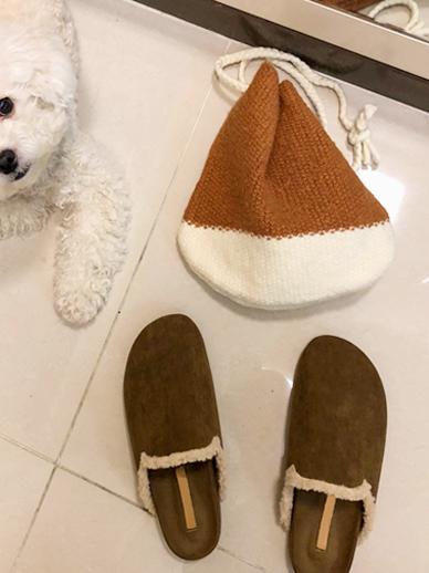 泰迪雪,鞋毛,鞋